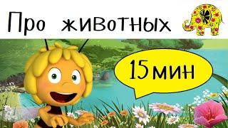 Детские загадки про животных. 17 мультиков загадок с ответами!