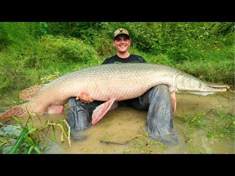 MONSTER Alligator Gar Fishing in Texas!!! (EPIC)