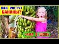 ТЫ ЗНАЕШЬ КАК РАСТУТ БАНАНЫ Детский ютуб ВЛОГ канал для детей mp3