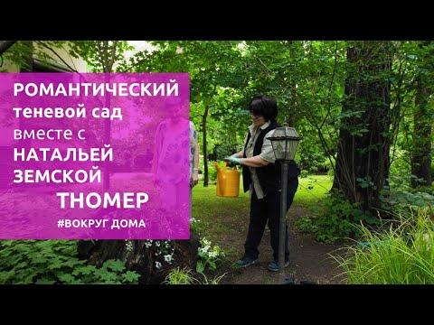Романтический теневой сад Елены Седовой | #ВокругДома