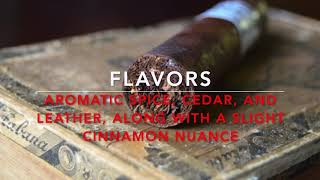 Novembers's Currently Smoking Cigar of the Month: Punch Signature
