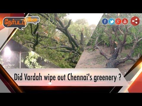 Nerpada Pesu: Did Vardah wipe out Chennai's greenery ? |13/12/2016 | Puthiyathalaimurai TV