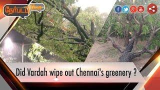 Nerpada Pesu 13-12-2016 Did Vardah wipe out Chennai's greenery ? – Puthiya Thalaimurai tv Show