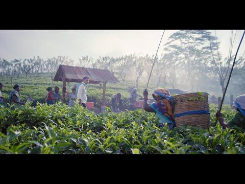 Commercial Bank SME Loans Ad Film