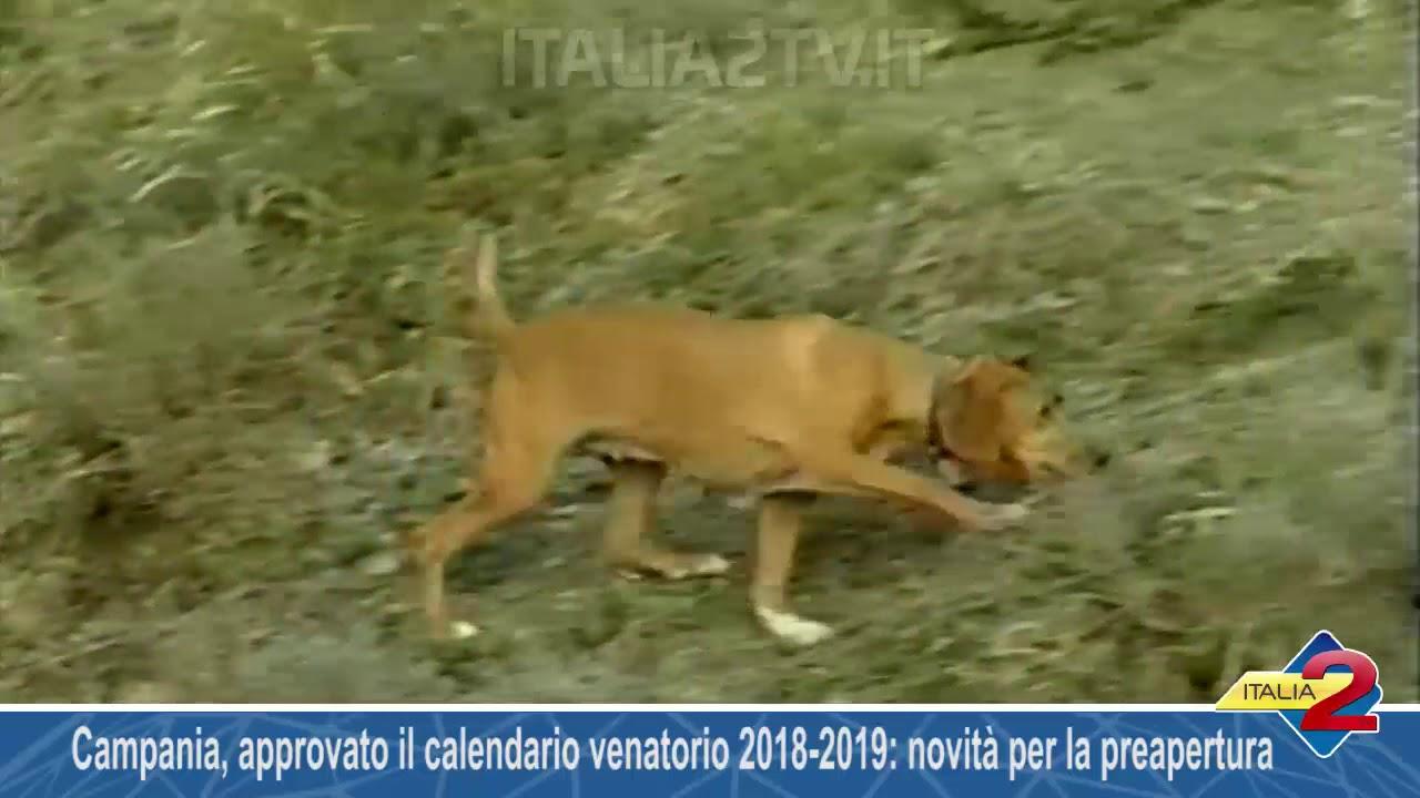 Campania Caccia Calendario Venatorio.Campania Approvato Il Calendario Venatorio 2018 2019