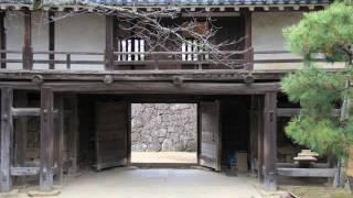 江戸城桜田門外で暗殺された伊井直弼の城、又リサイクルの城でも有名です、