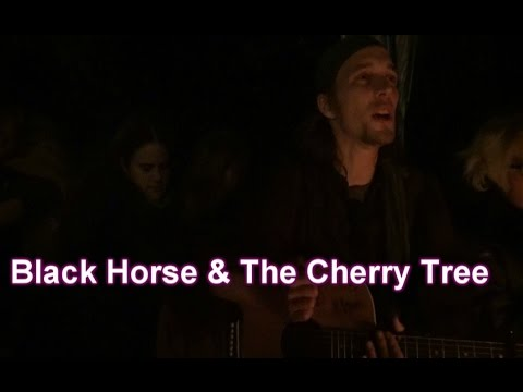 black horse and the cherry tree - 480×360