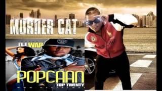 popcan and muerder cat