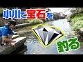 【世界最小】日本最古のゲームフィッシング の動画、YouTube動画。