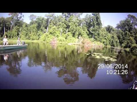 2014 06 29, Fishing Dorr With Tom Horton