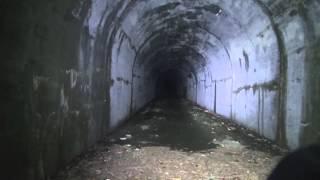 閲覧注意 GHOST RESEARCH 2014 旧雛鶴トンネル編