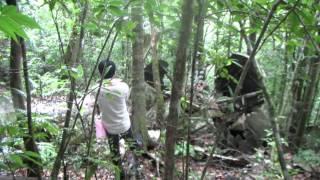 【カンボジア】アオラル山 飛行機墜落現場(山頂付近)