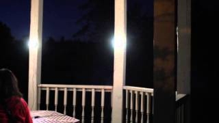 LED Solar Lighting System - Firefly