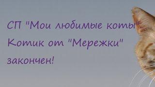 """СП """"Мои любимые коты"""" Котик от """"Мережки"""" закончен!"""