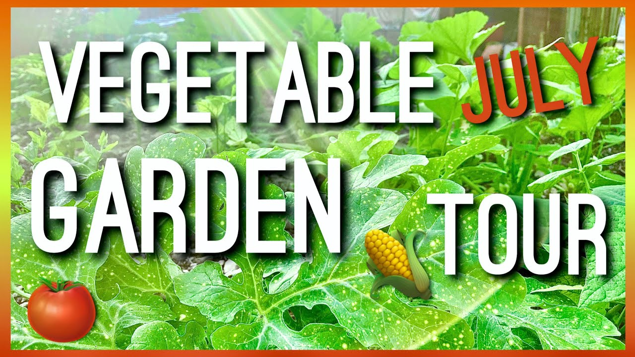 Vegetable Garden Tour in July 2020! Tour of my Outdoor Garden! Flower Garden Tour | Summer Garden