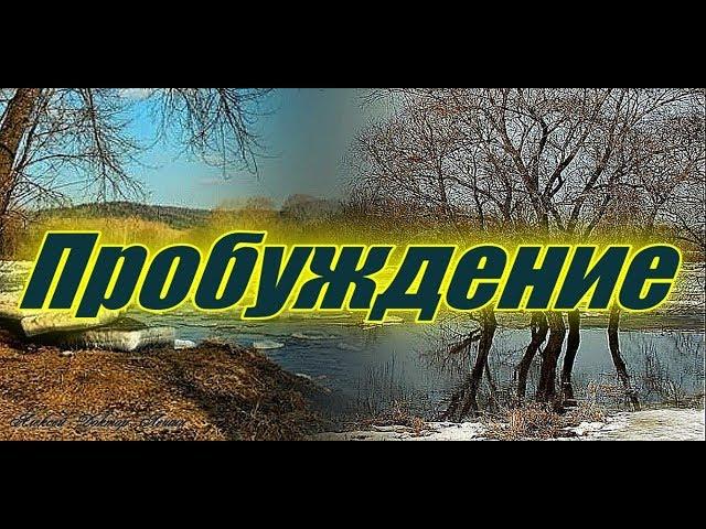 Пробуждение (стихи )  - Алексей Доктор Леший -  бард