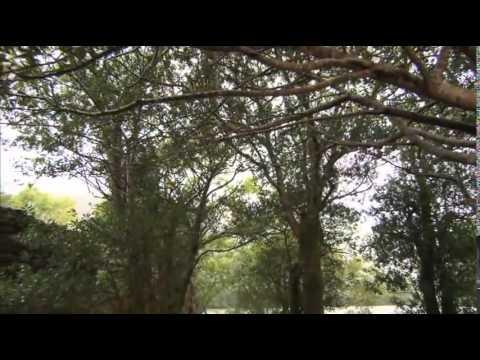 Orla Fallon My Land Movie free download HD 720p