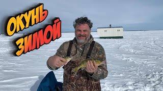 Зимняя рыбалка на окуня в Канаде