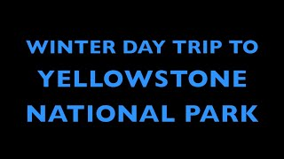 Winter Day Trip in Yellowstone National Park
