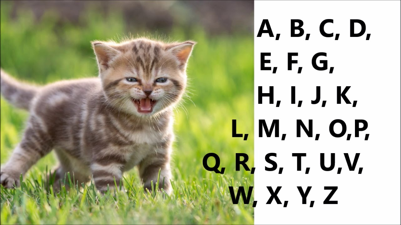 Alfabet Po Angielsku Angielski Alfabet Abc Piosenka