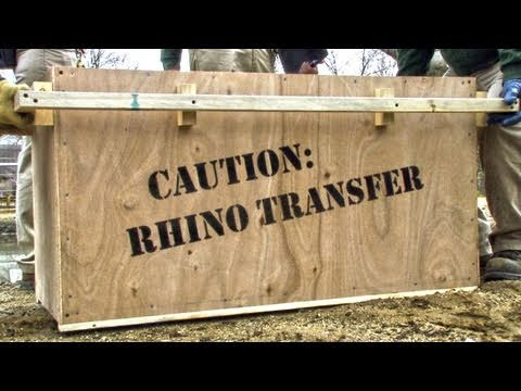 Operation Rhino - Brookfield Zoo