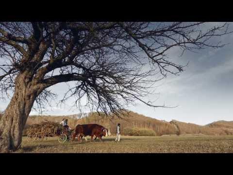 Calin Brateanu si Ceata de la Boroaia - Pe la noi de sarbatori ( 2017 )