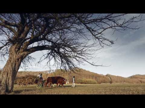 Calin Brateanu - Ilenuta vino-ncoace ( 2014 )
