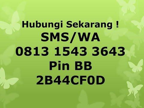 0812 1027 5067 (Telkomsel) Dahsyat !!! Obat Pelangsing Yang Aman dan Ampuh Biolo WSC from YouTube · Duration:  2 minutes 55 seconds