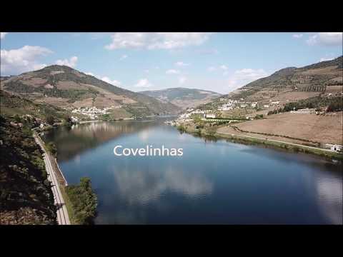 Covelinhas Primavera 2019