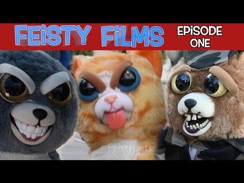 Feisty Films Episode 1: Invasion of the Feisty Pets
