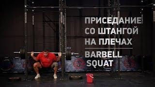Приседание со штангой, техника и разбор ошибок / Barbell squat - proper technique and common error
