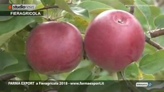 Farma Export durante Fieragricola 2018 a Verona