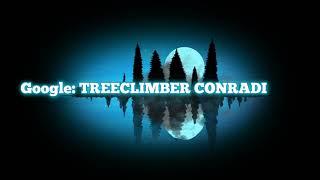 Treeclimber Conradi  ( Travel and Work Thüringen )
