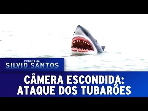 Câmera Escondida (01/05/16) - Ataque dos Tubarões
