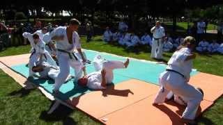 Ukrainian Enshin Karate Organization in France. September, 3-15, 2013