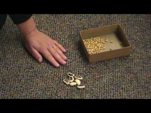 How To Make And Play The Native American Deer Button Game
