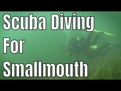 Scuba Diving For Smallmouth Bass | Fish'n Canada