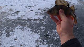 Зимняя рыбалка на реке Олым
