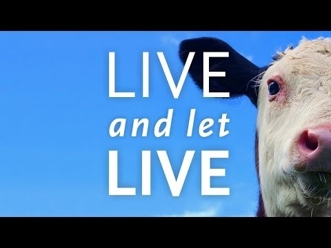 Live And Let Live - Trailer