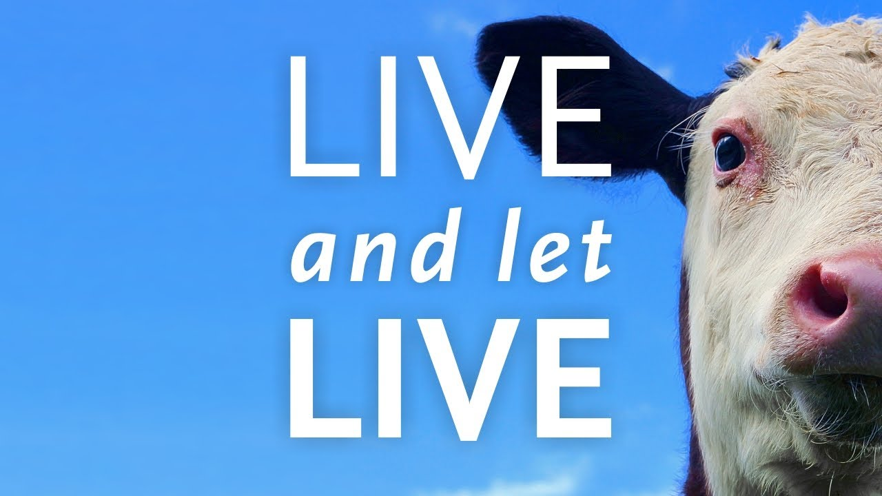 Image result for live and let live netflix documentary