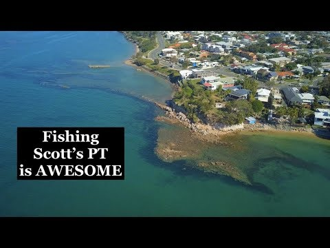 SCOTTS POINT, Redcliffe, Why FISHING Is So Good