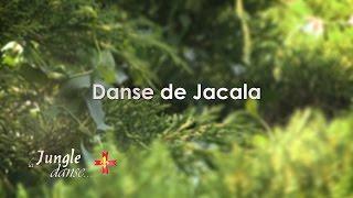 La Jungle Danse - Danse de Jacala