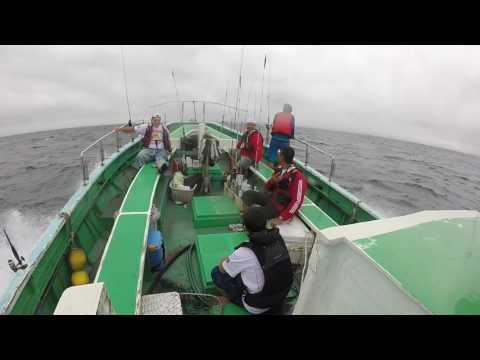 tochigi grupo de pesca na captura do shiira 2