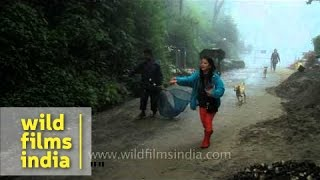Darjeeling Goodwill Animal Shelter Trust (DGAST)