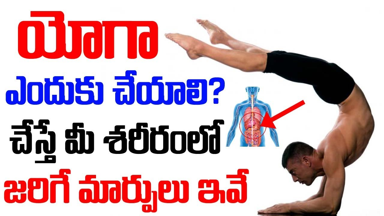 Best Time For Yoga Yoga For Beginners Yoga In Telugu How To Do Yoga At Home Youtube