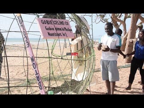Lutte contre les plastiques : 4 GOBIES placés sur la plage l'hydrobase