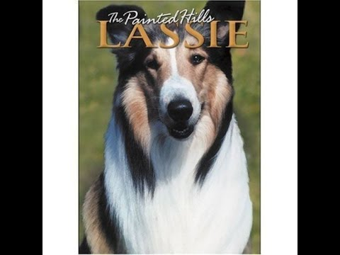 Opening To Lassie:The Painted Hills 2006 DVD