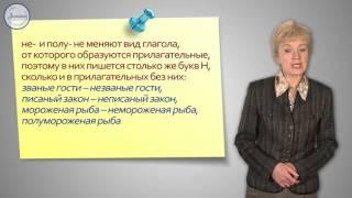 Русский 10 Н и НН в словах разных частей речи