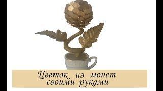Цветок из мелких десятикопеечных монет своими руками / Денежное дерево