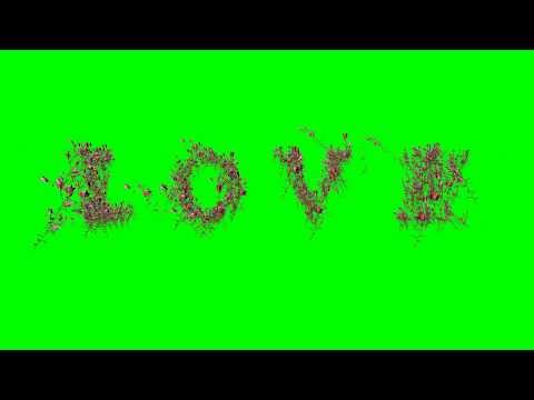 4K Love Logo made of flowers Animation AA VFX thumbnail